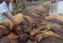 Photo of চামড়ার দাম তলানিতে ঠেকলেও চামড়াজাত পণ্যের দাম আকাশ ছোঁয়া